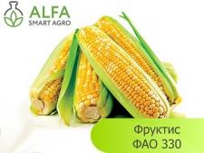 Семена кукурузы Фруктис, ФАО 330