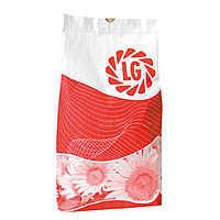 Семена подсолнечника LG 5555 LIMAGRAIN